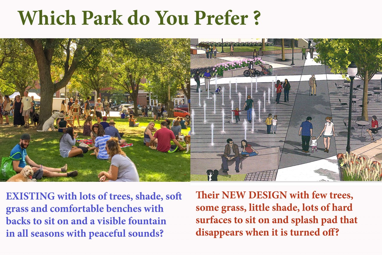 New Plan for City Hall Park Will Remove 60% of the Trees. Please Help Save Our Trees!