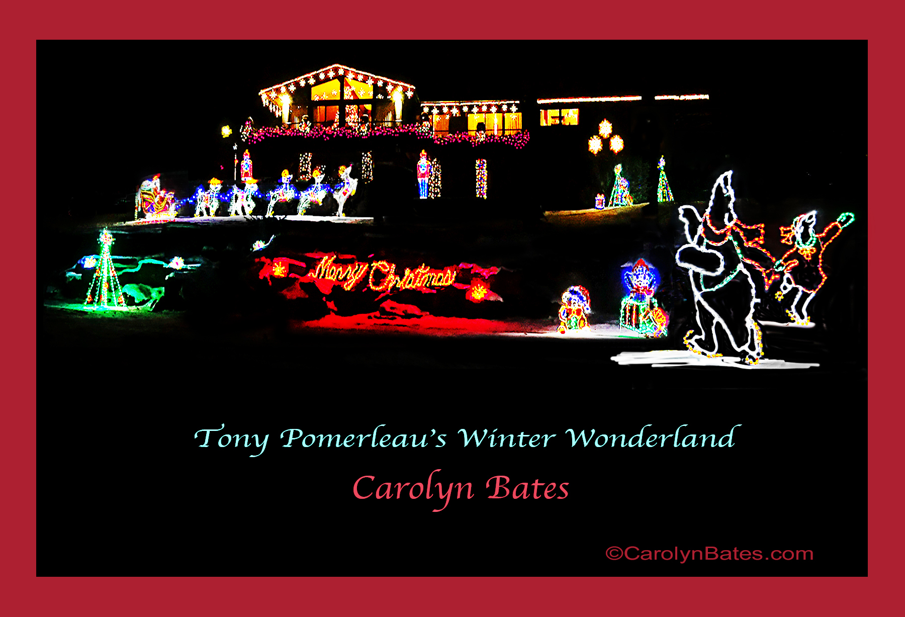 Merry Christmas from Carolyn Bates Photography
