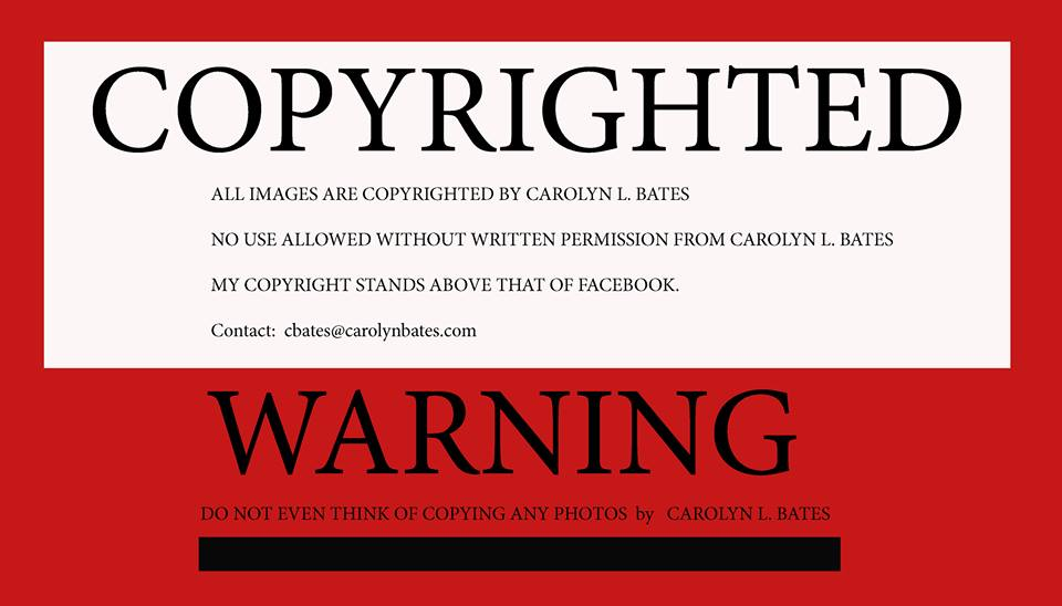 No Facebook, you cannot take away my Copyright.