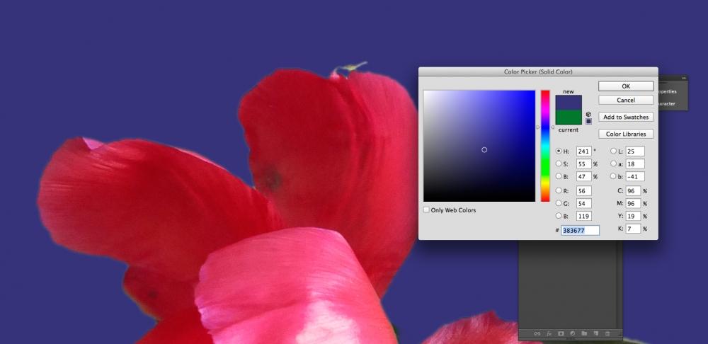 a1sx2_Original1_GreenScreen-5.jpg
