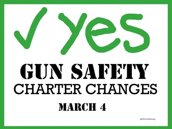 Gun Sense Vermont Handout