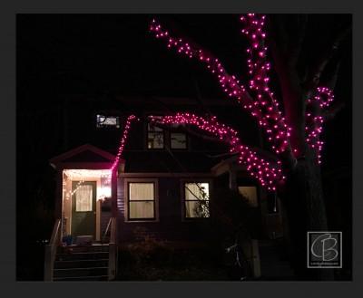 b2ap3_thumbnail_making-of-a-christmas-card-1.jpg