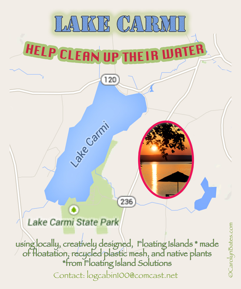 LAKE CHAMPLAIN: Clean Up with Floating Islands