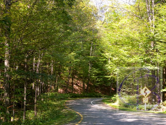 Sleeping Bear - Road