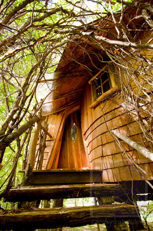 treehouses CLB8223
