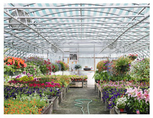Lang Farm Nursery